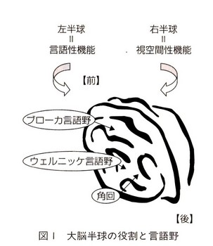 taipu006 (3).jpg